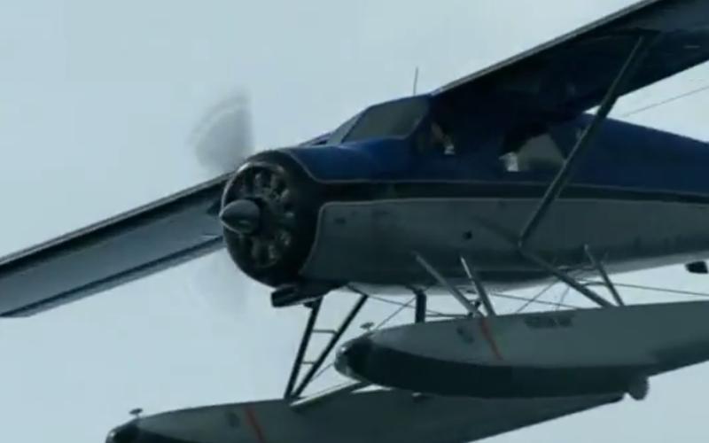Meconopsis - Films aéronautiques