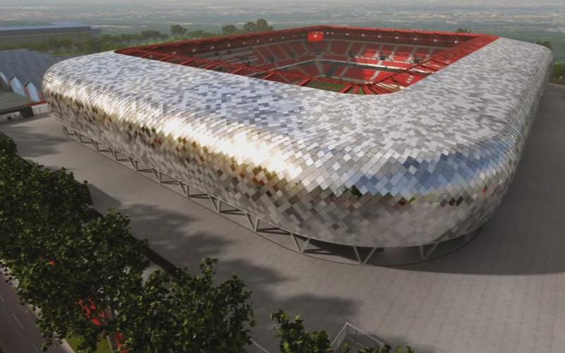 Meconopsis - Stade du Hainaut
