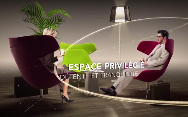 Meconopsis - Salon Grands voyageurs SNCF